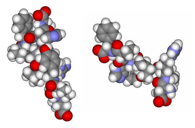 angiotensina I y angiotensina II